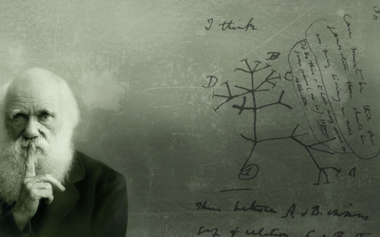 Charles Darwin Wallpaper 1280x800 ID15909   WallpaperVortexcom 1280x800