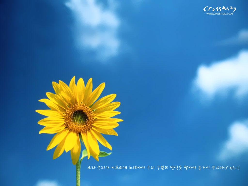 free christian desktop wallpaper sunshine 29065 html filesize 1024x768 1024x768