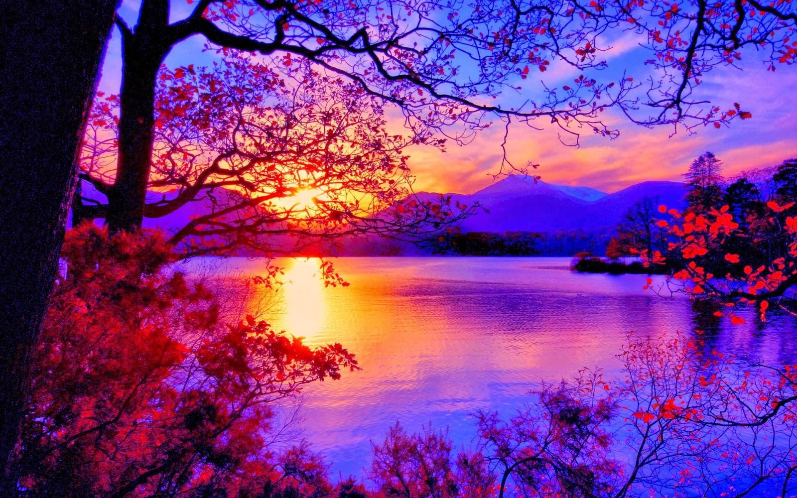 Beautiful Sunrise Wallpaper WallpaperSafari