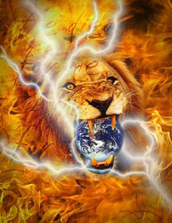 Lion of Judah wallpaper wpz2051   wallpapermadcom 557x720
