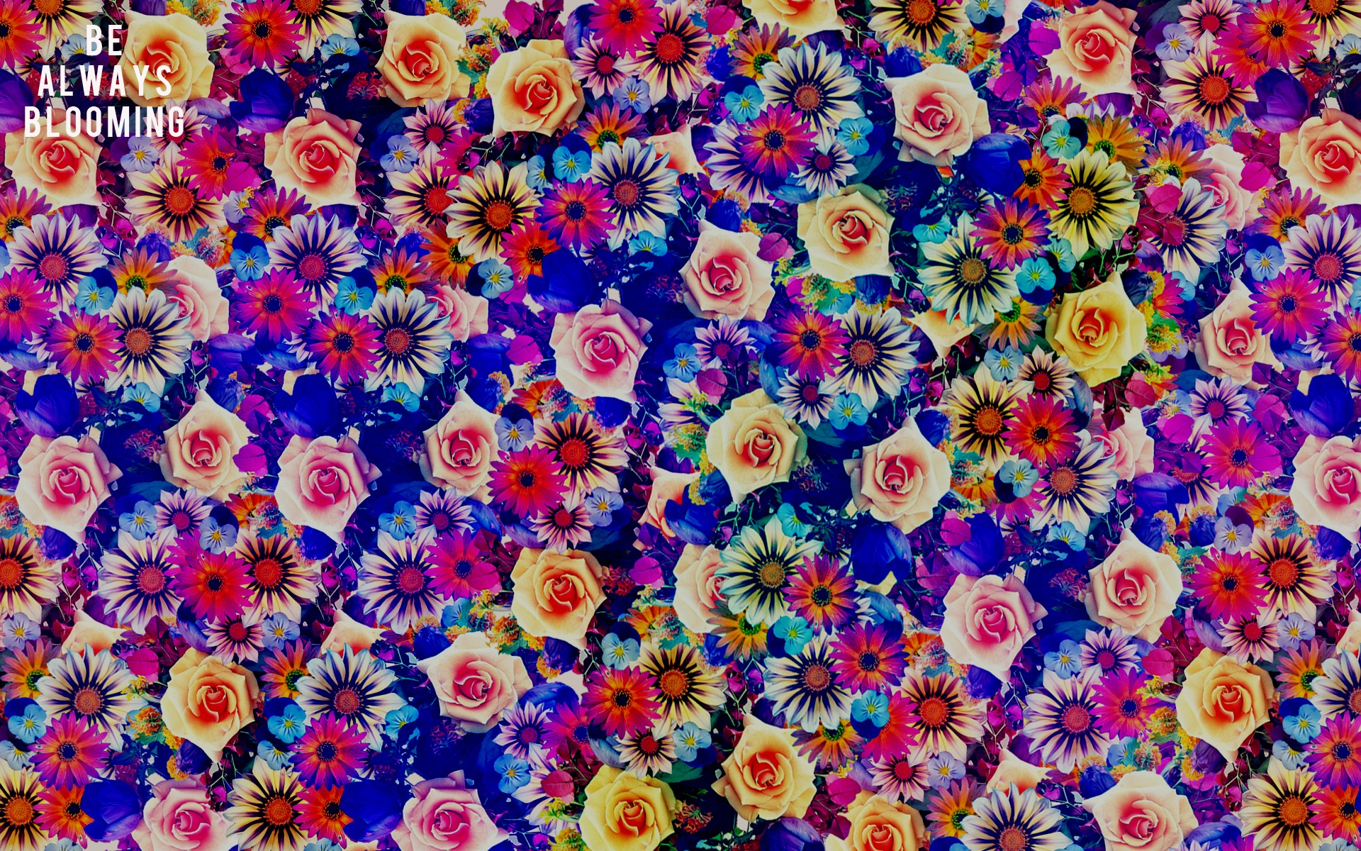 boho desktop wallpaper - photo #7