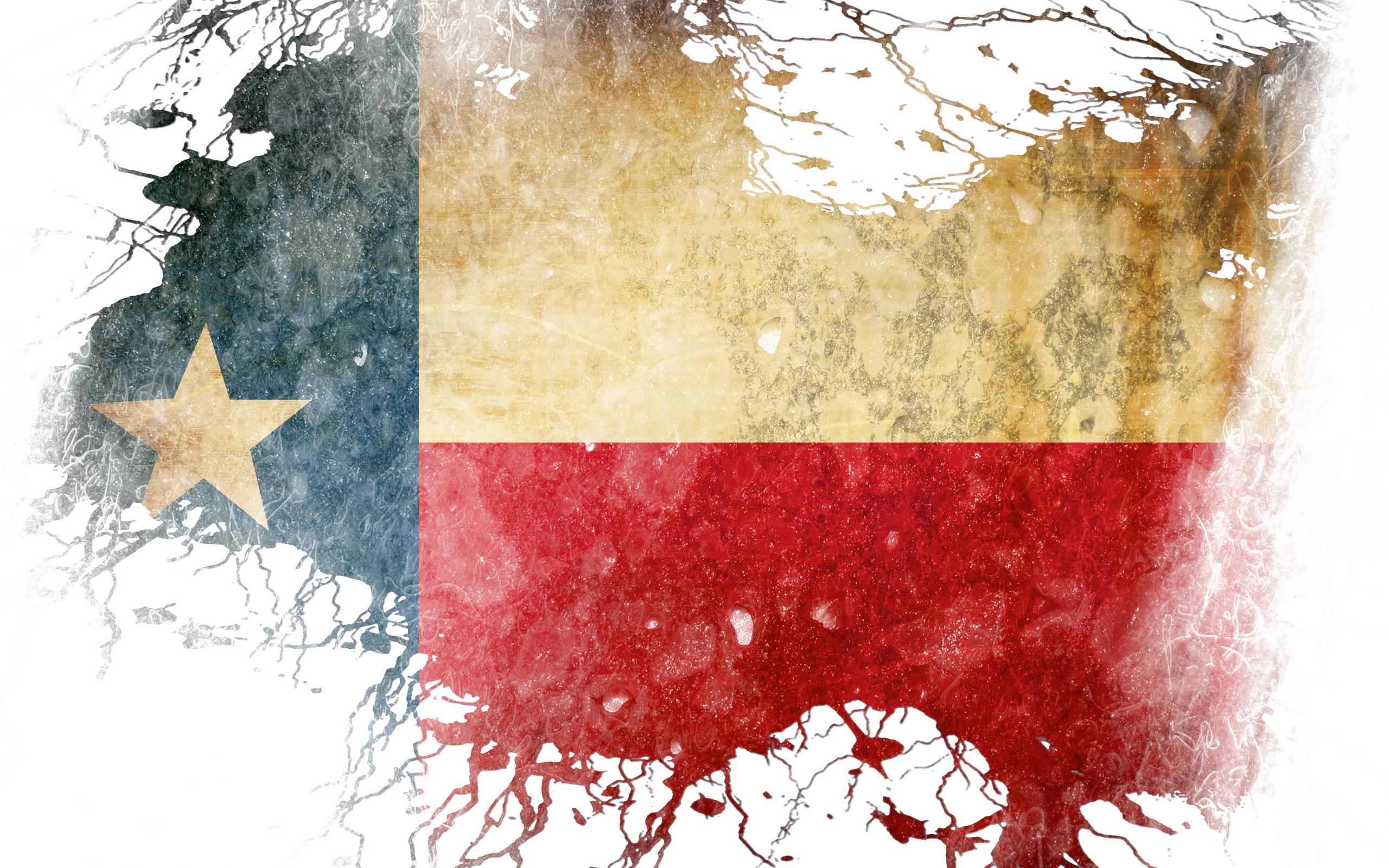 Flag Of Texas 2560x1600