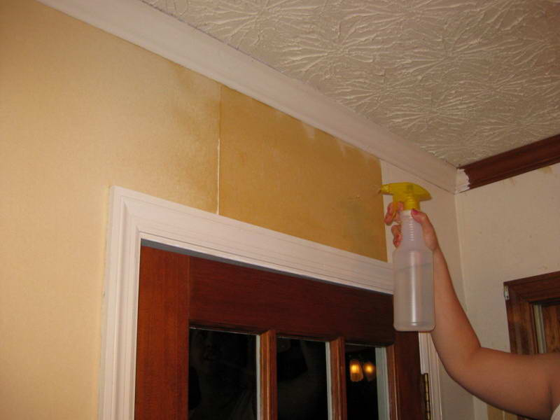 How to Take Off Wallpaper Apply some Liquids 800x600
