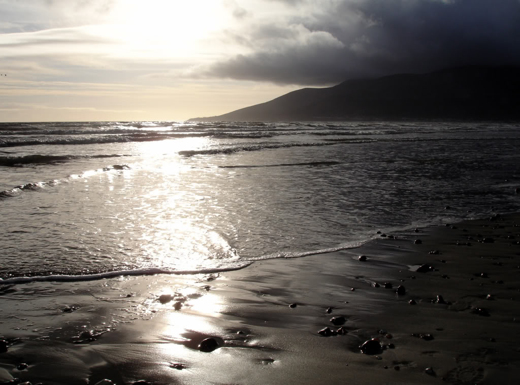 White and black beach wallpapers video