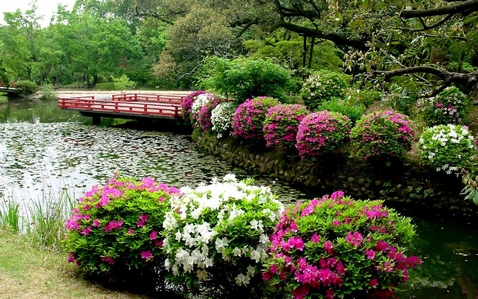Japanese Garden 1920x1200