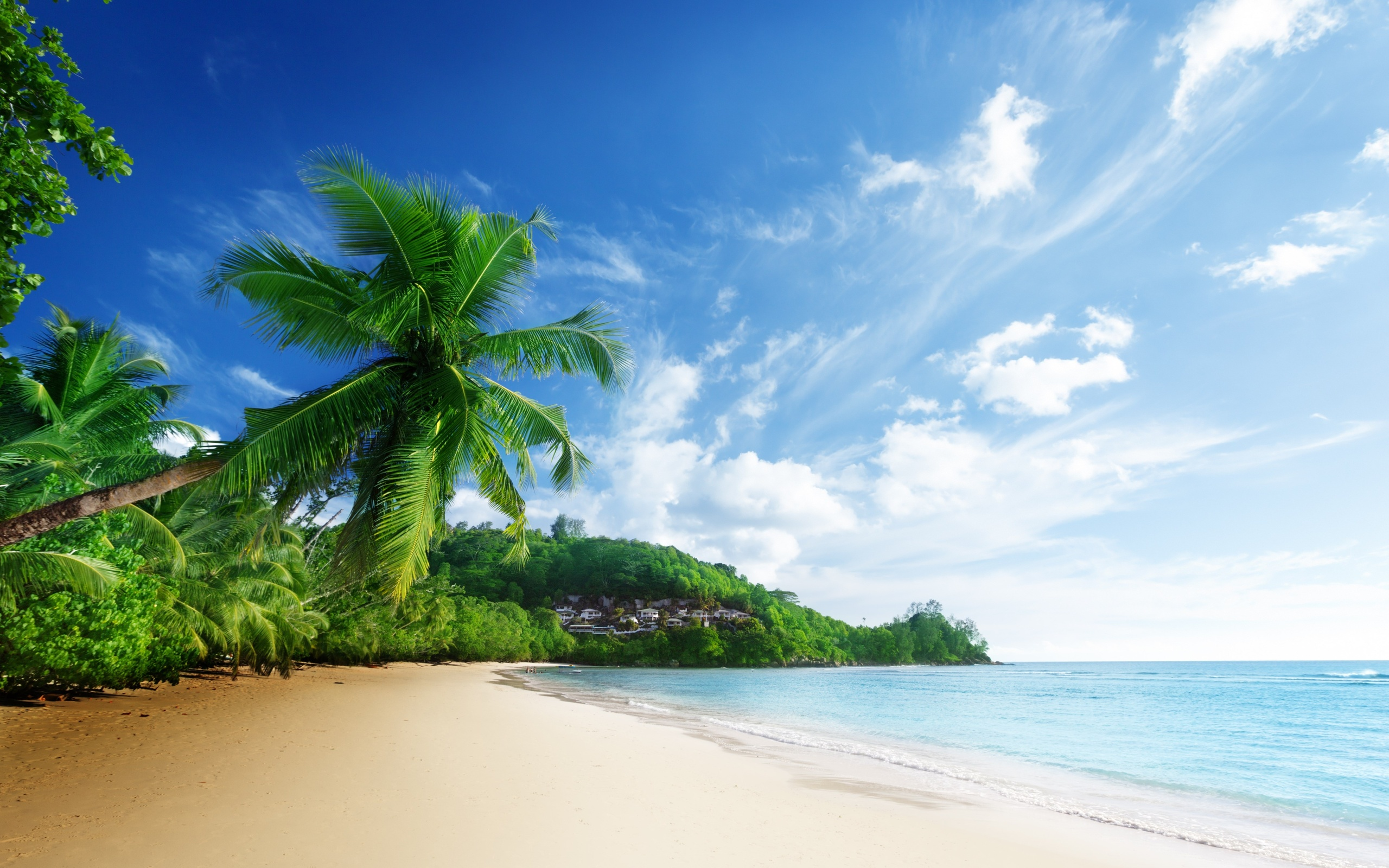 Tropical Beach Wallpaper HD 14411 Wallpaper WallDiskPaper 2560x1600