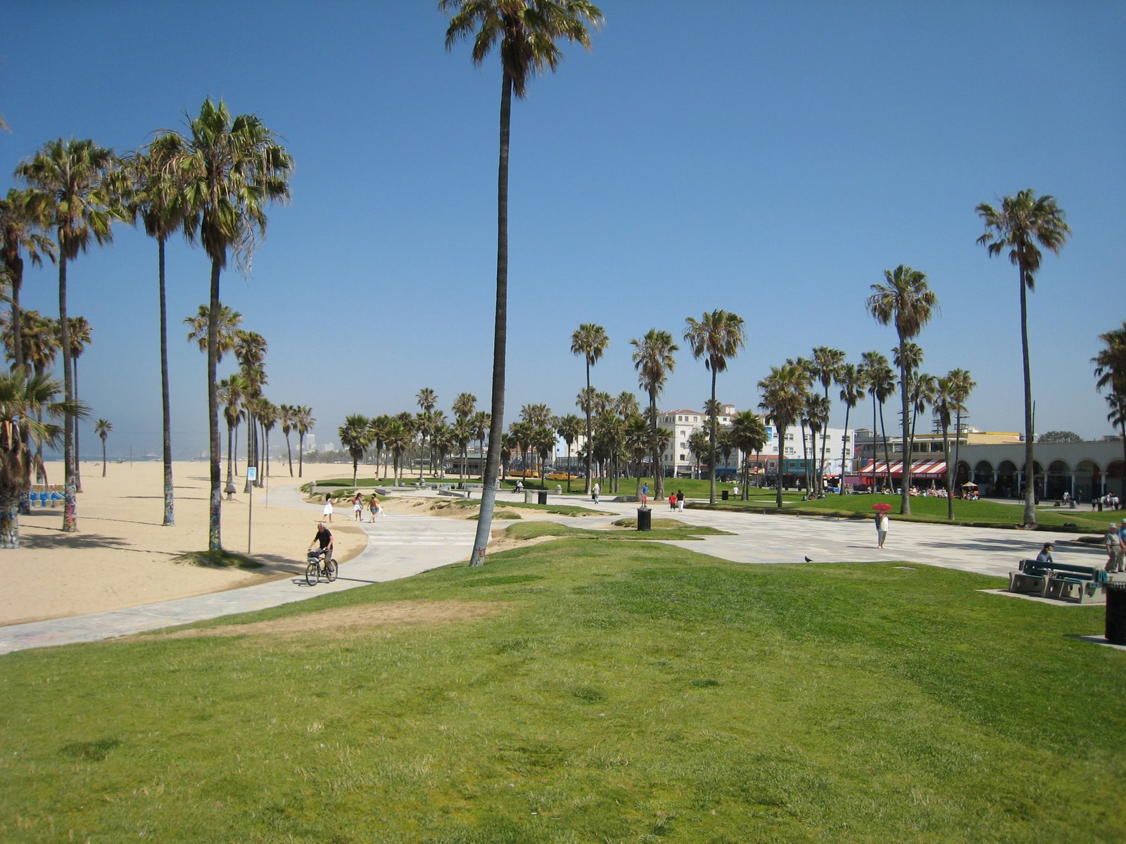 Venice Beach Wallpapers HD Wallpapers Early 1600x1200