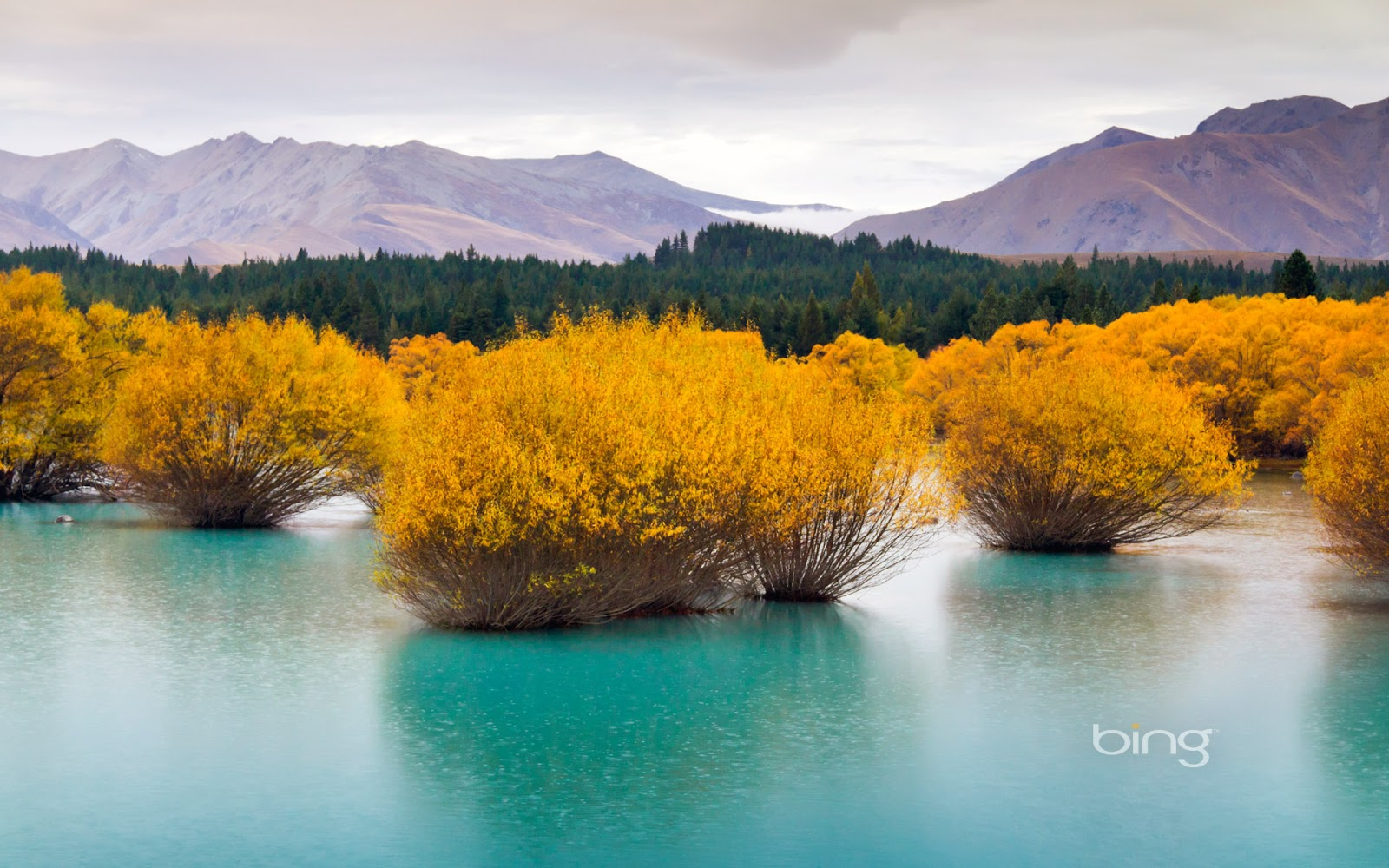 Glacier-fed lake, South Island, New Zealand (© picturegarden/Getty ...