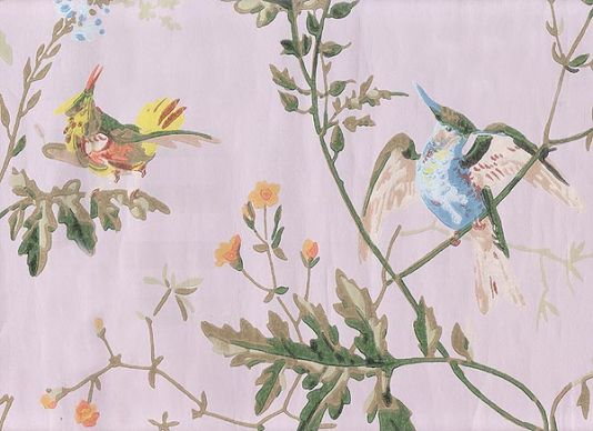 Hummingbirds Wallpaper Wallpaper with colourful birds on branches 534x388