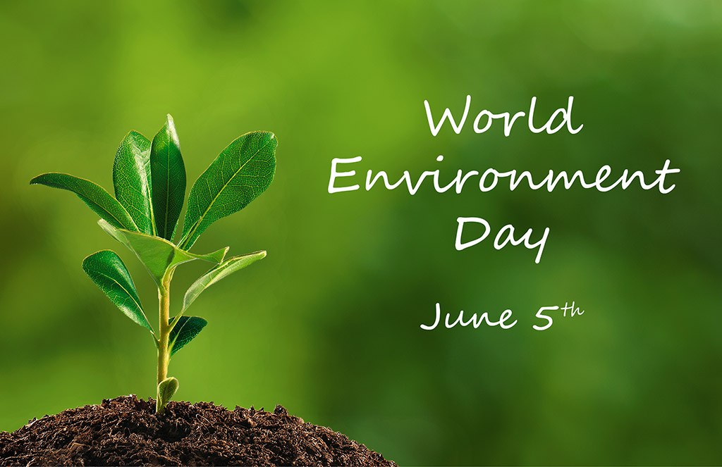 World Environment Day HD wallpaper ItAllCounts Charity 1024x663