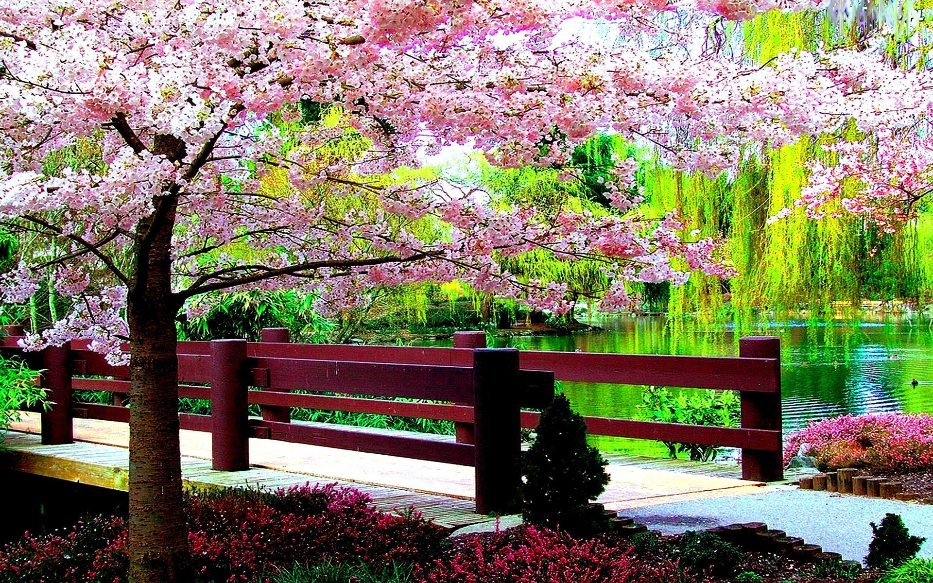 Free spring screensavers and wallpaper wallpapersafari - Free computer backgrounds for spring ...