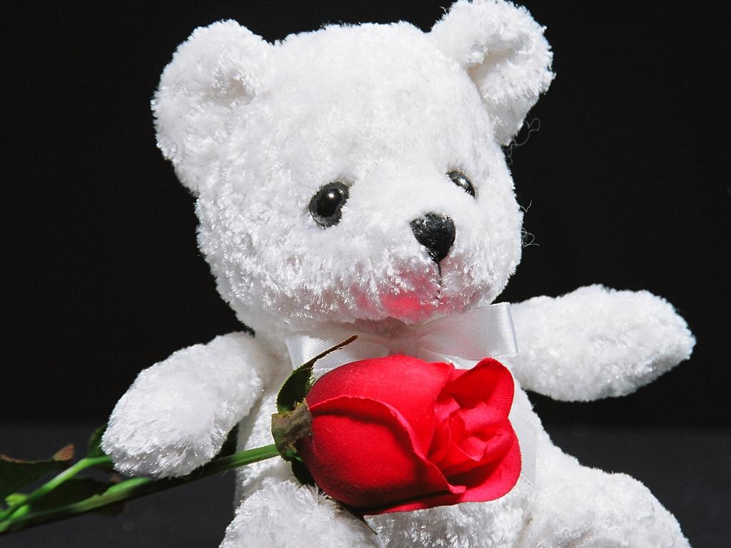 Free Download 25 Romantic Teddy Bear Wallpapers 1024x768