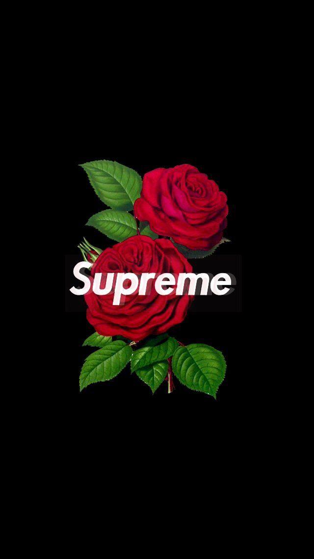 supreme rose wallpaper iphone 640x1136