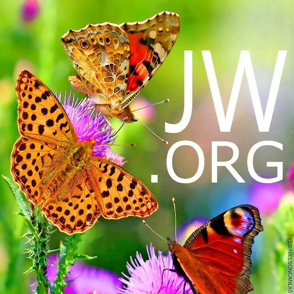 50+] JW ORG Wallpaper on WallpaperSafari