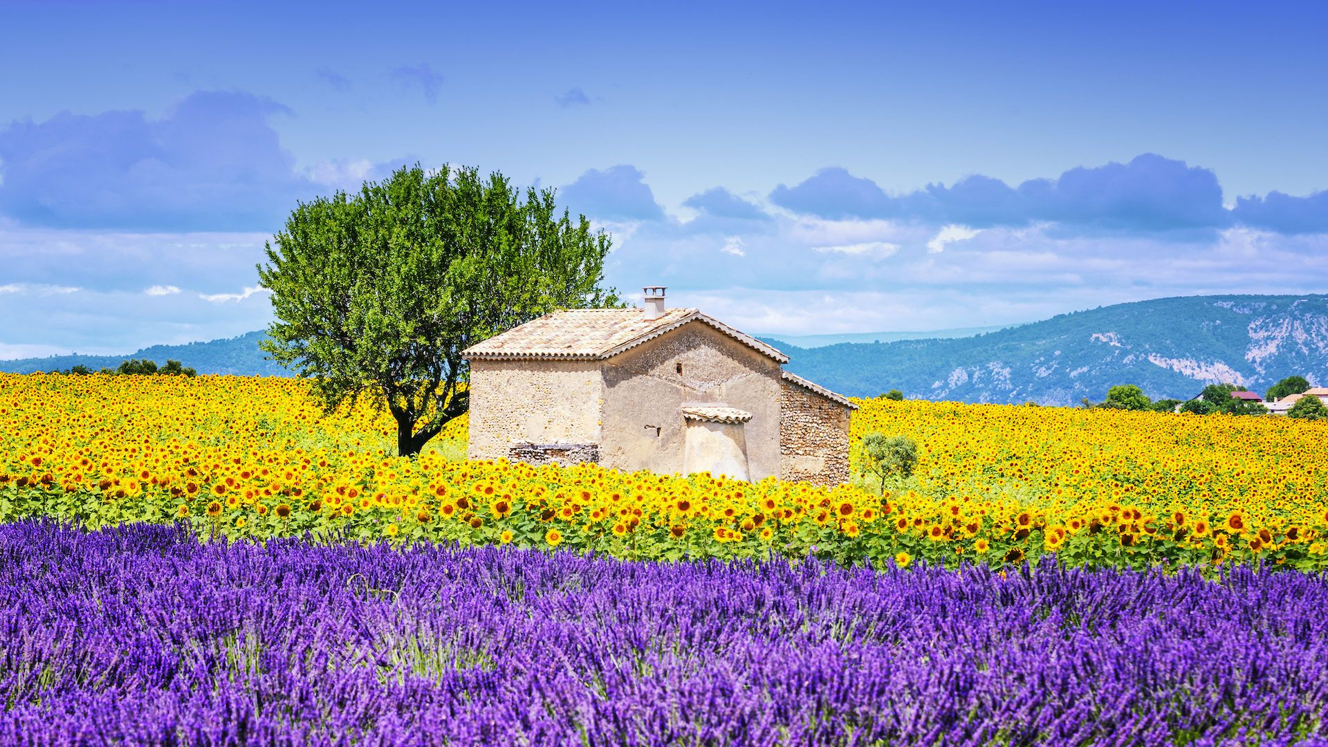 Provence France Wallpapers   Top Provence France Backgrounds 1920x1080