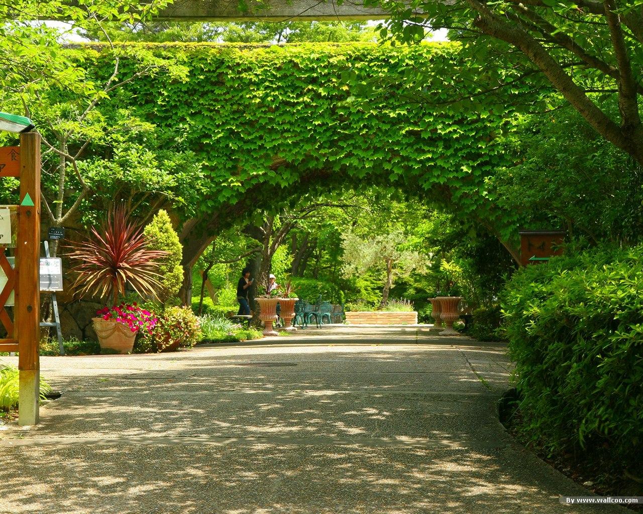 Japanese garden picture v1223619342jpg 1280x1024