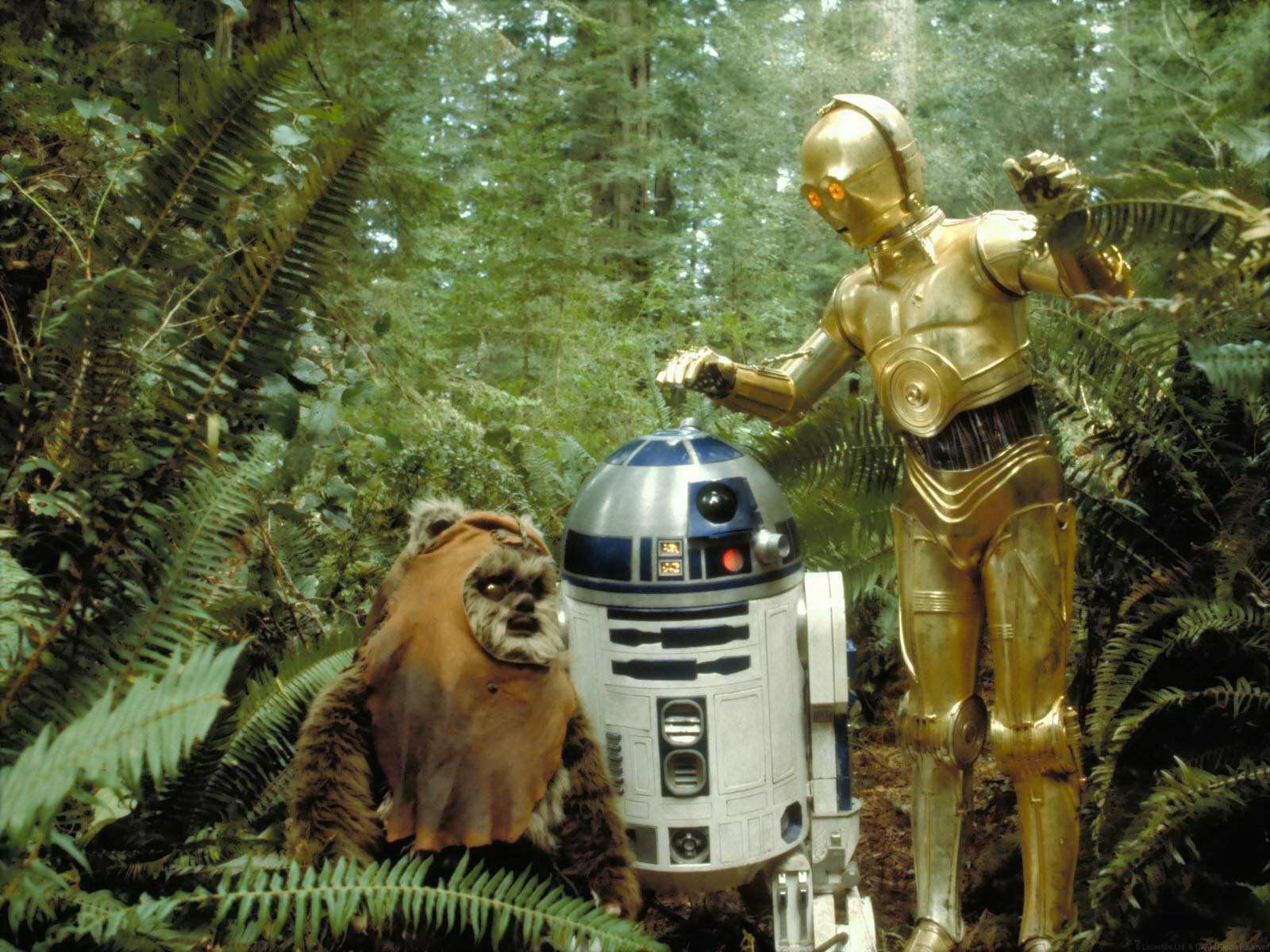 Free Download 3po Meet An Ewok On Endor In Star Wars Episode Vi