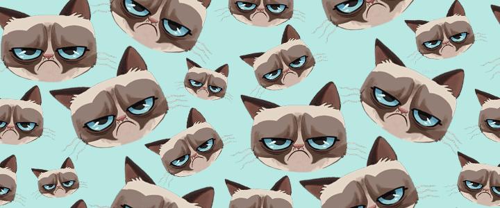 Grumpy Cat Heads Tumblr Dashboard Theme 720x300