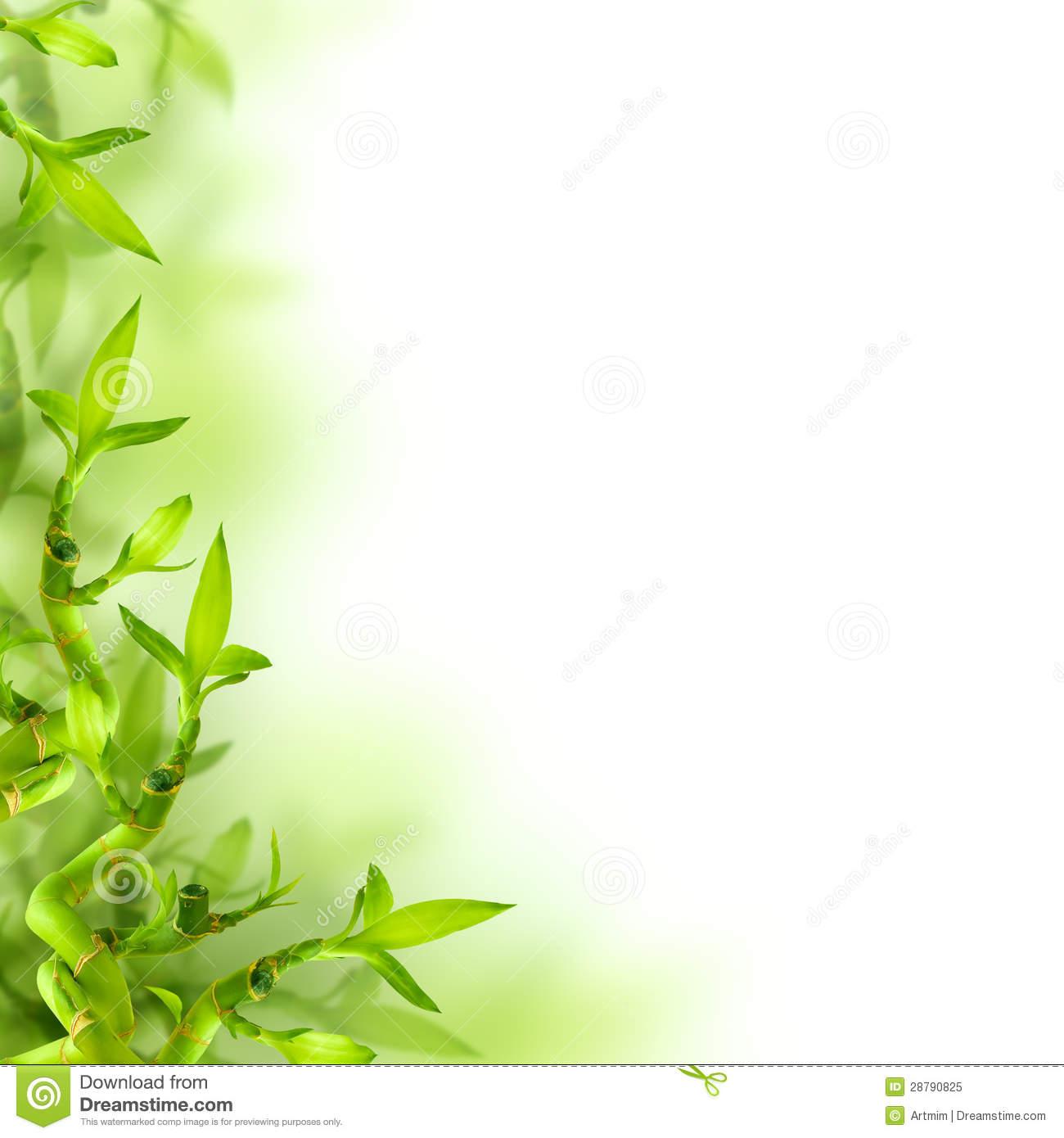 69 Green Leaves Wallpaper On Wallpapersafari
