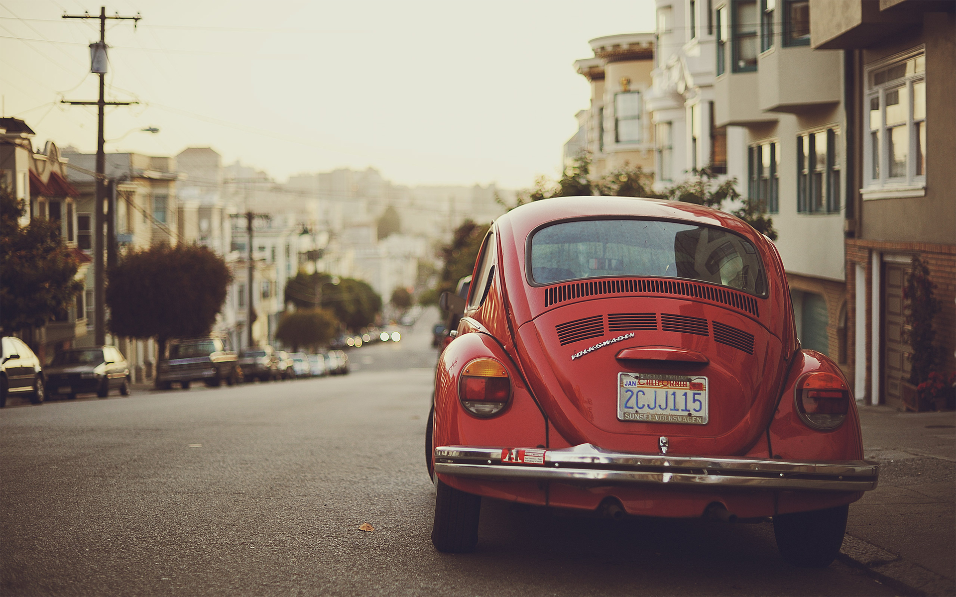 vw beetle   Volkswagen Beetle Wallpaper 23460450 1920x1200