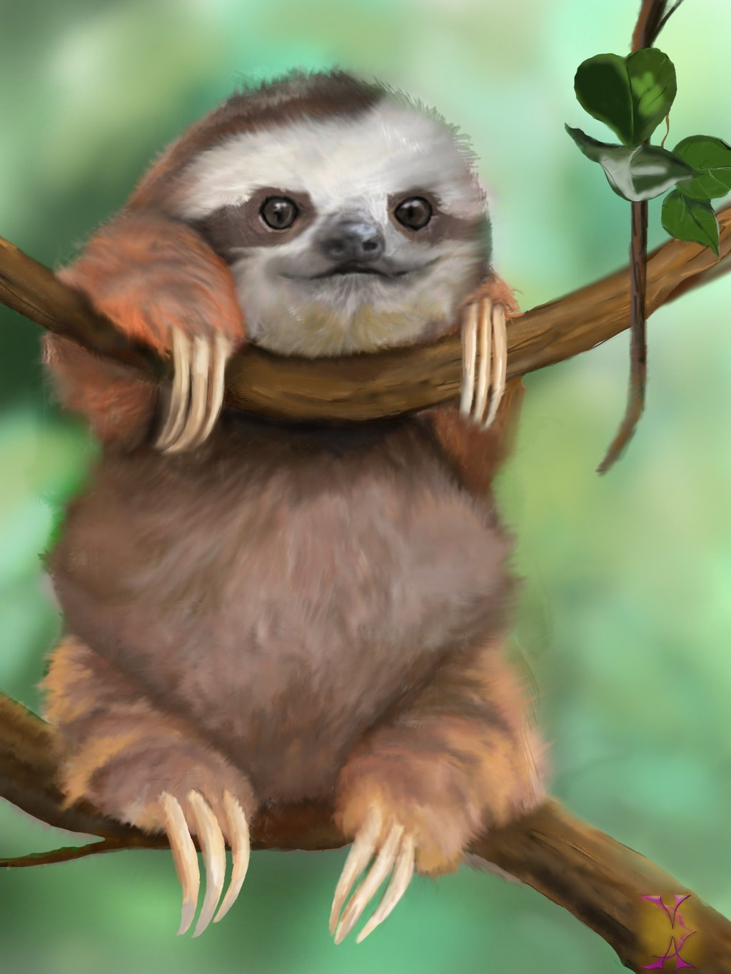 45 Cute Sloth Wallpaper On Wallpapersafari