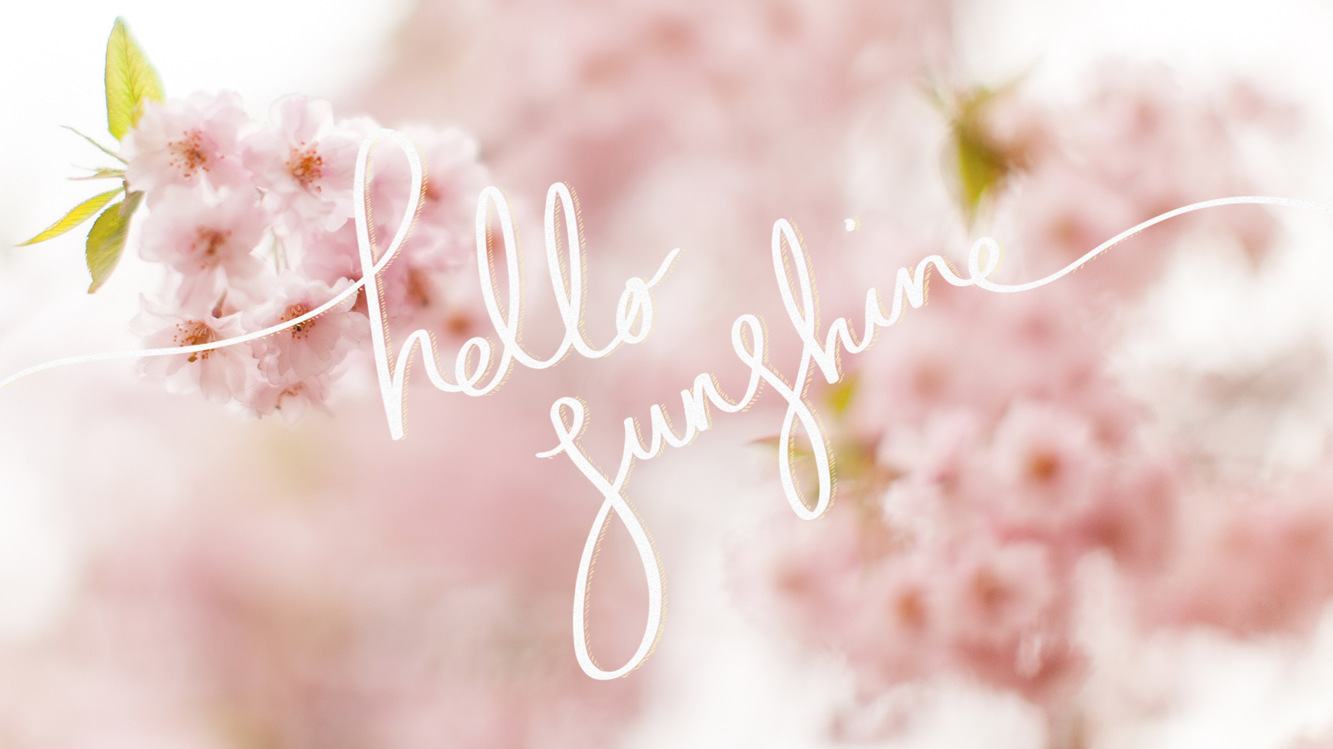 You Are My Sunshine Wallpaper
