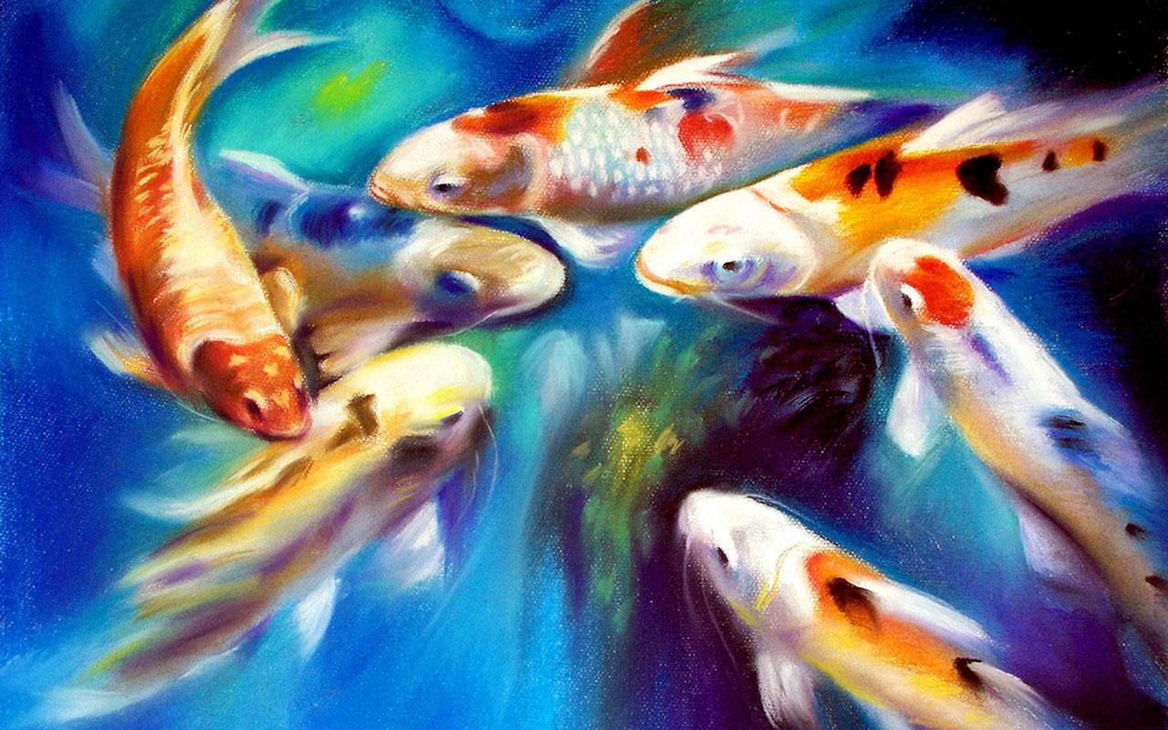 Hd koi fish wallpaper wallpapersafari for Koi fish pond hd