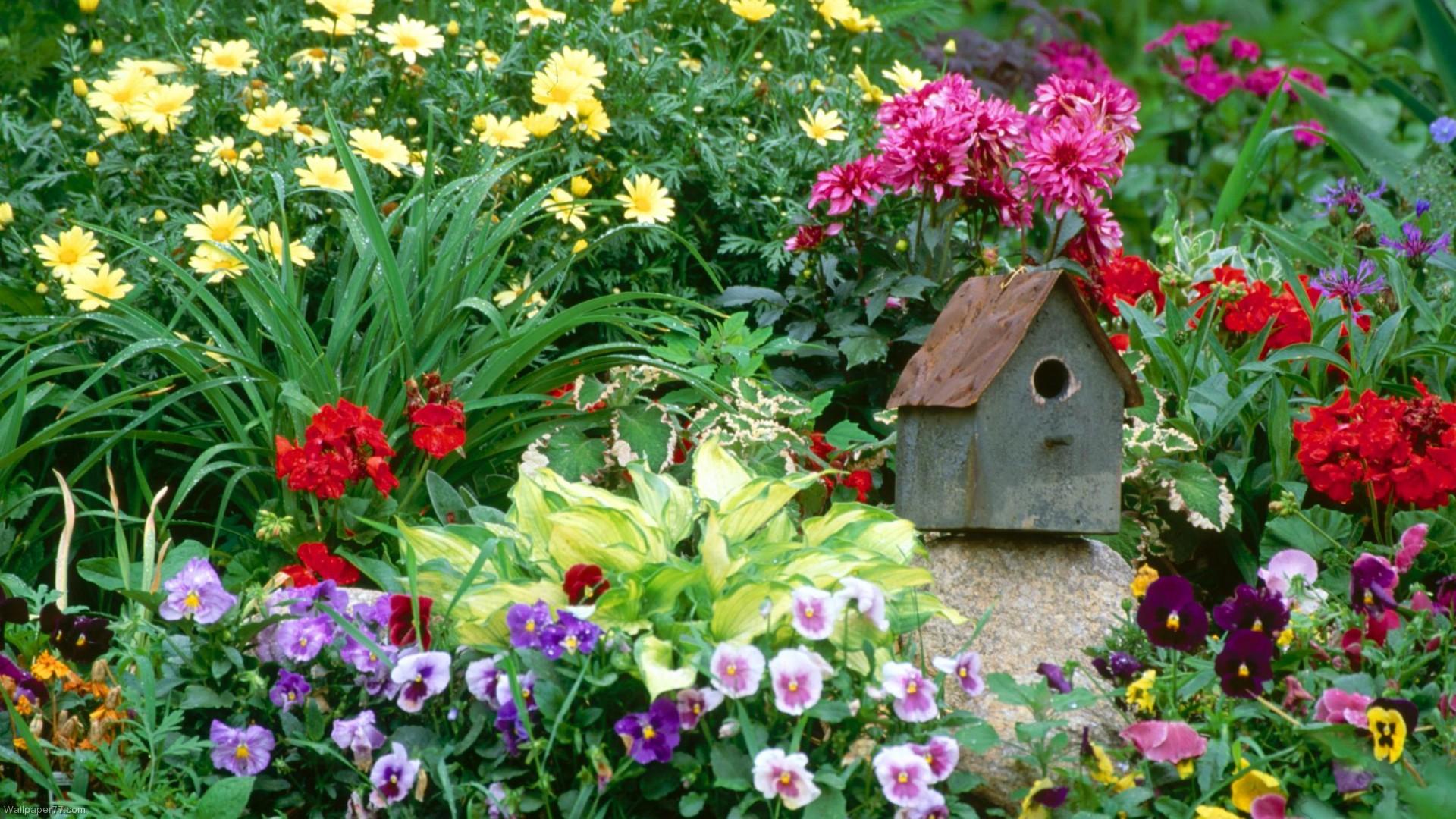 48+] Flower Garden Wallpapers for Desktop on WallpaperSafari