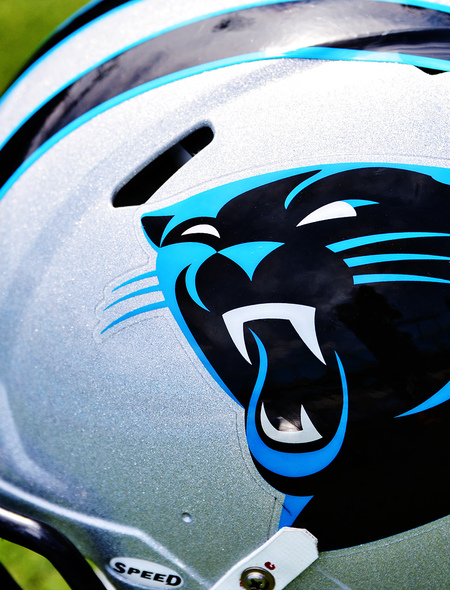 Carolina Panthers Wallpapers For Phones And Tablets 450x590
