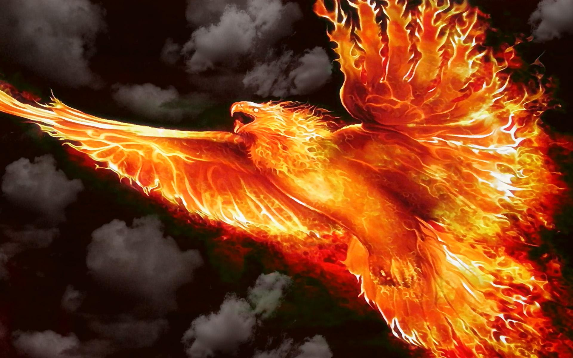 Firebird Wallpaper Wallpapersafari