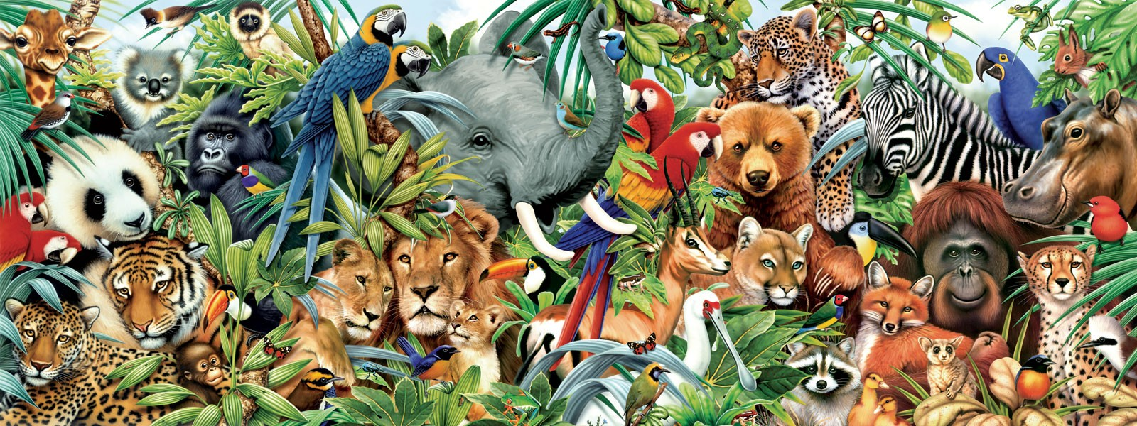 Jungle Animals Real Life Wallpapers Hd