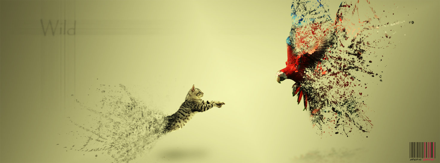 facebook cover wallpapers photo 1470x544