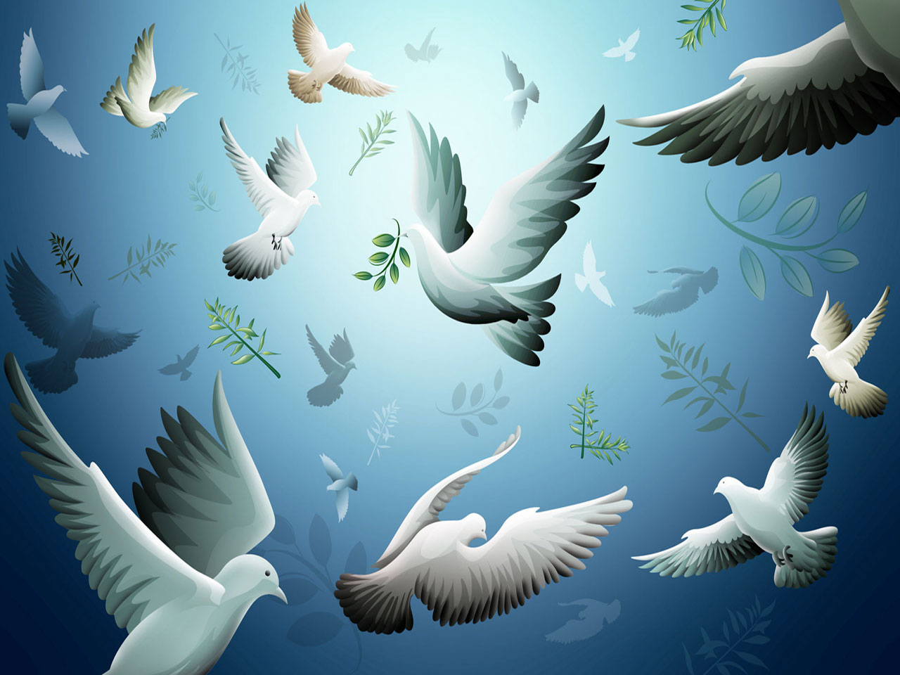 Free Download Animated Nature Wallpaper Animated Pigeons