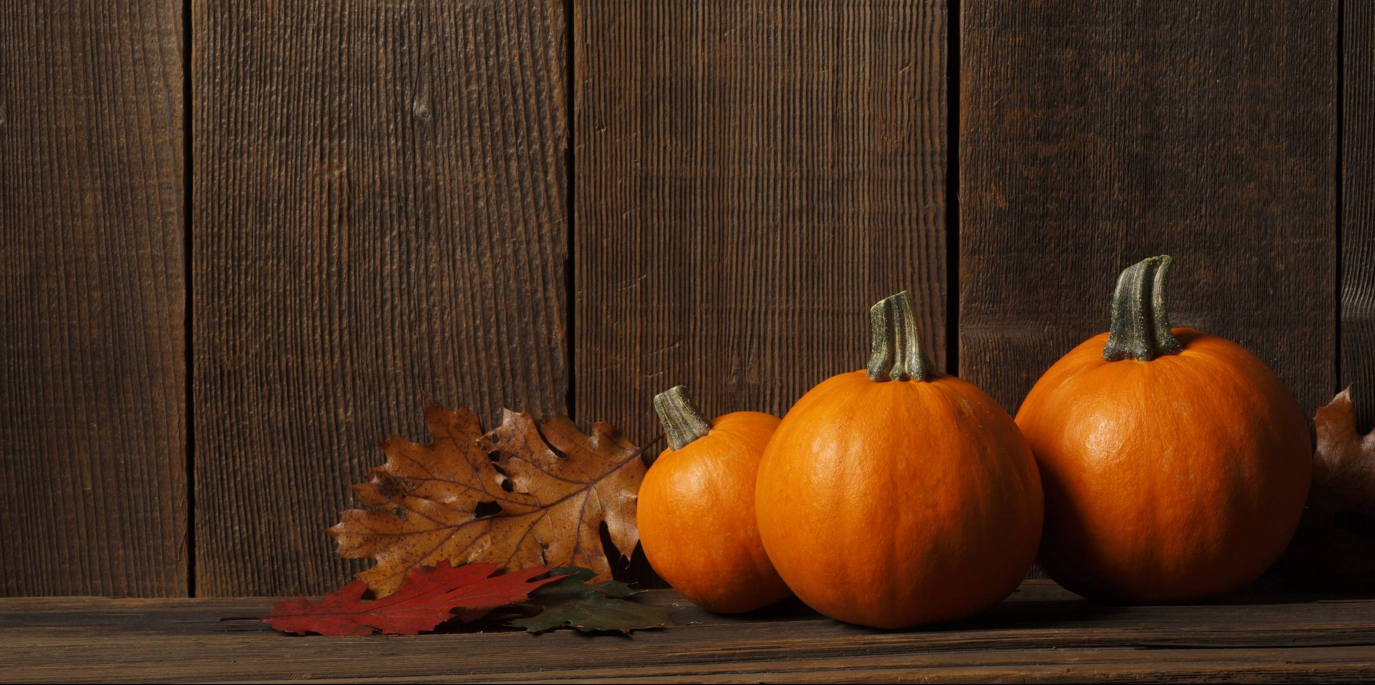 Thanksgiving background HD images Download Happy Thanksgiving 2709x1351