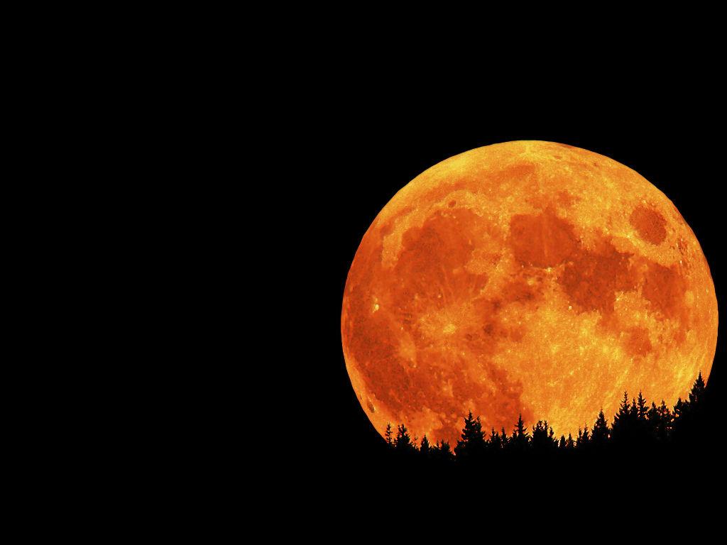 Orange Moon Wallpaper 1859 Hd Wallpapers in Space   Imagescicom 1024x768