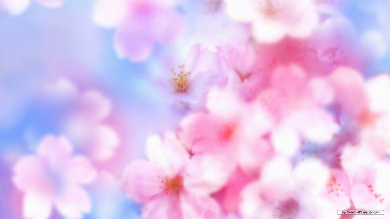 Floral Desktop Backgrounds 1366x768