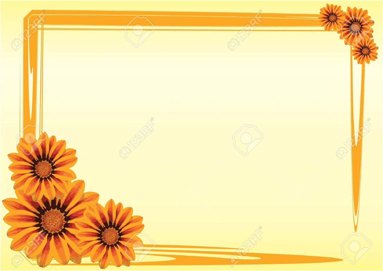 Gazania Flowers With A Orange Border On Yellow Background Royalty 1300x918