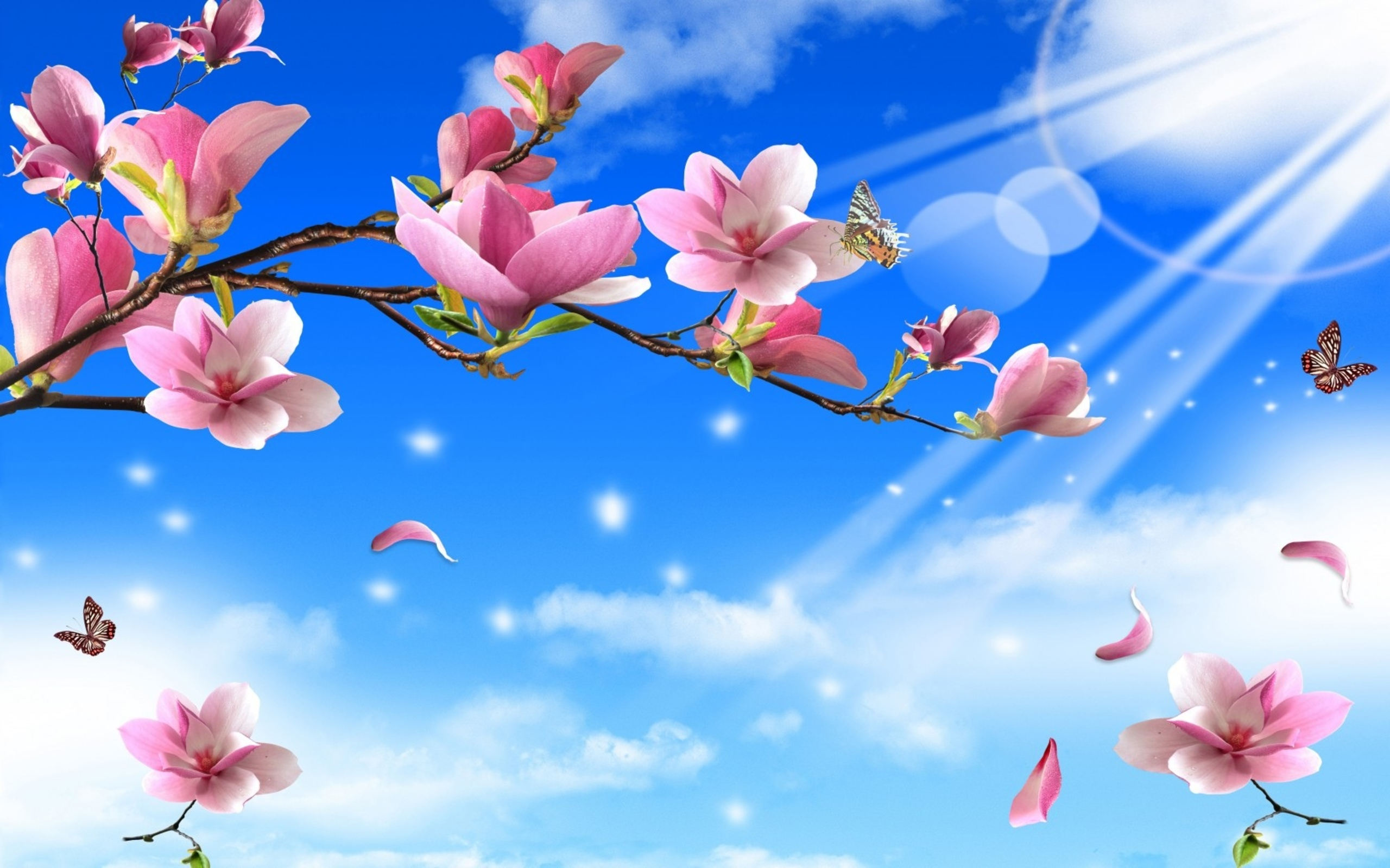 Free Download Funmozar Spring Flowers And Butterflies