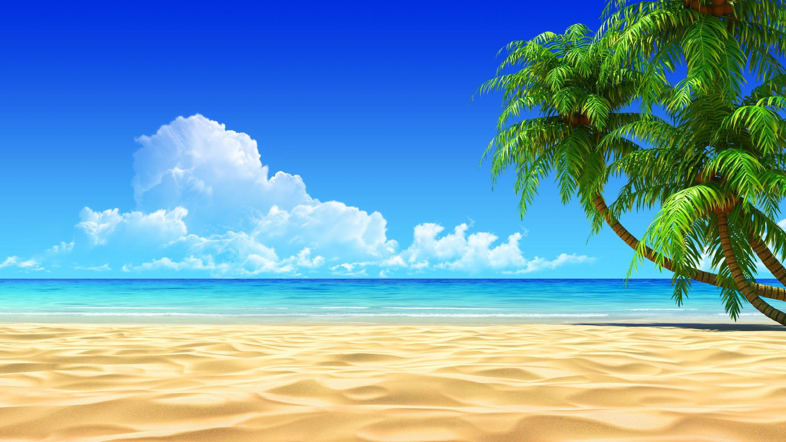 65 Aruba Beachfront Scene Desktop Wallpapers   Download at 2560x1440