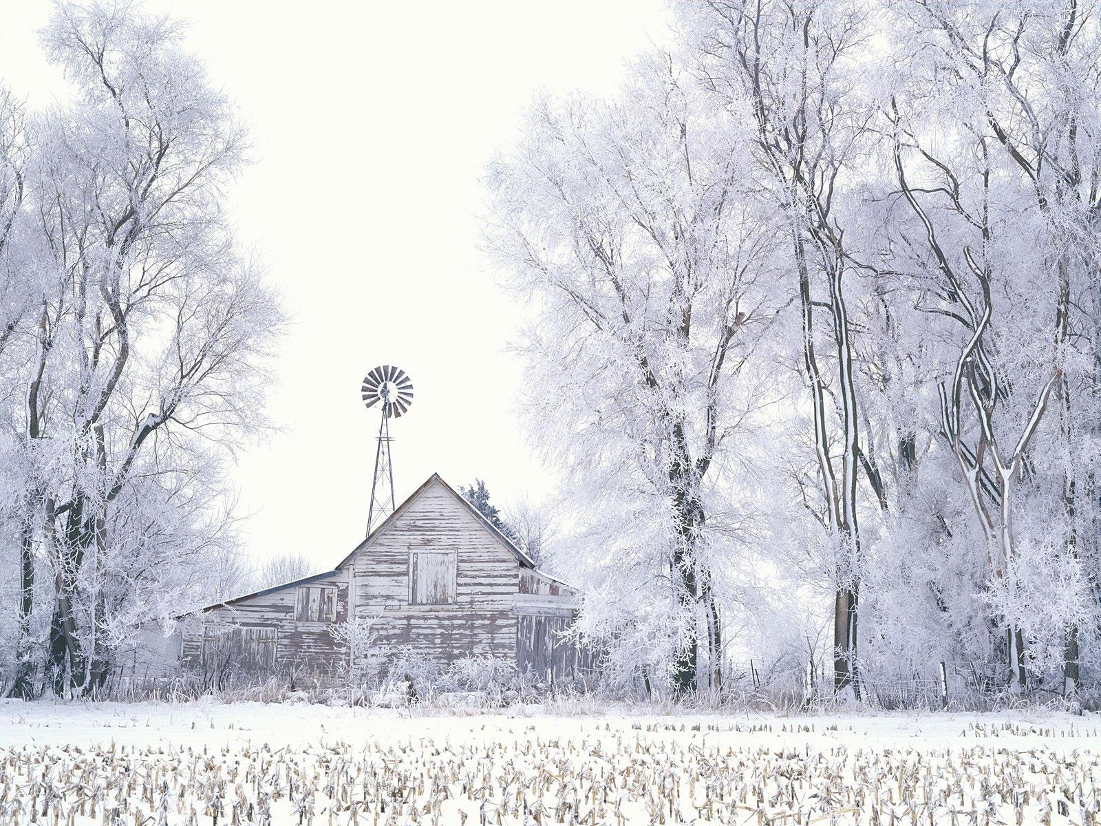 Frosted Farmland LaSalle County Illinois   Scenic Snow 1600x1200