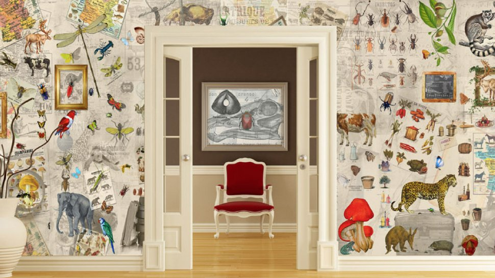 This Wild Wallpaper Turns Your Home Into A Natural History Museum 970x546