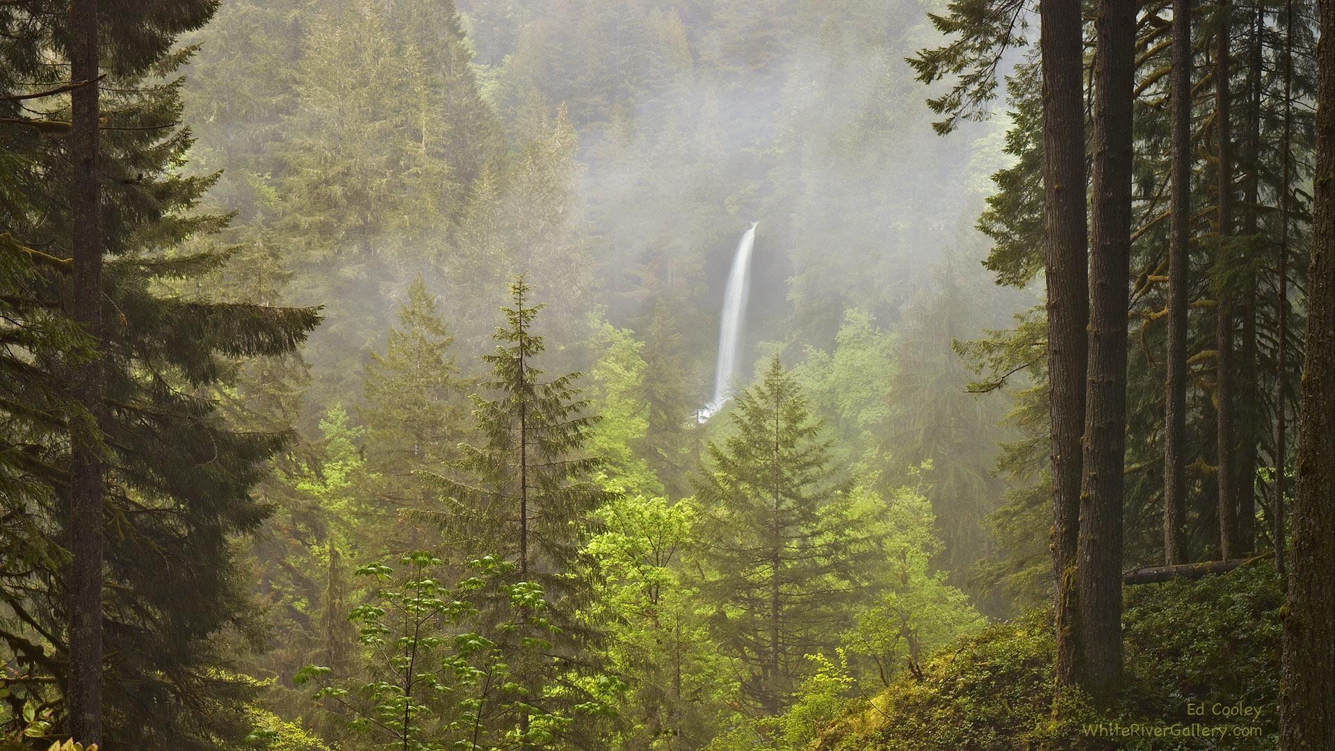 Washington State Hiking and Backpacking Tours   Wildland