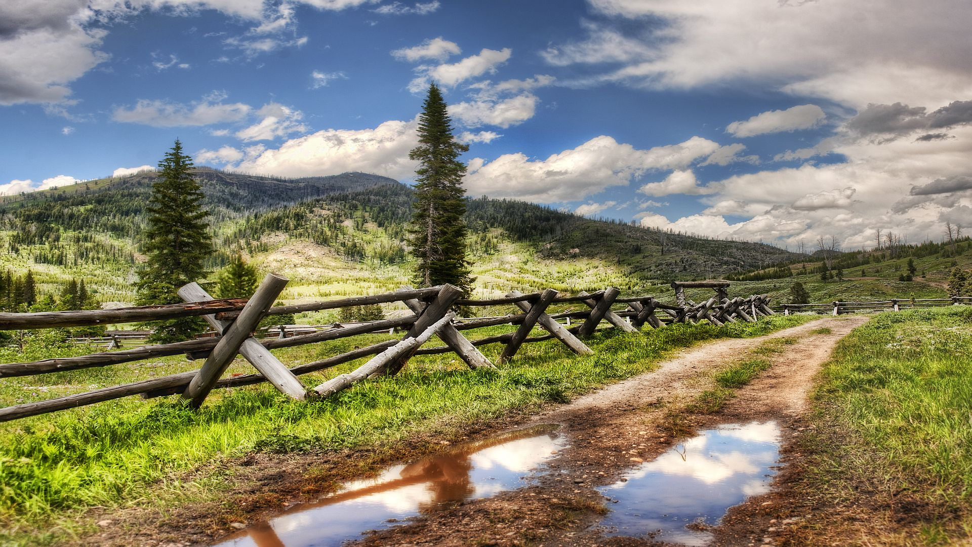 nature road wallpaper wallpapers tree fence 1920x1080 hdweweb4com 1920x1080