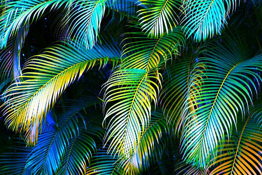 Palm Leaves In Blue by Karon Melillo DeVega 900x600