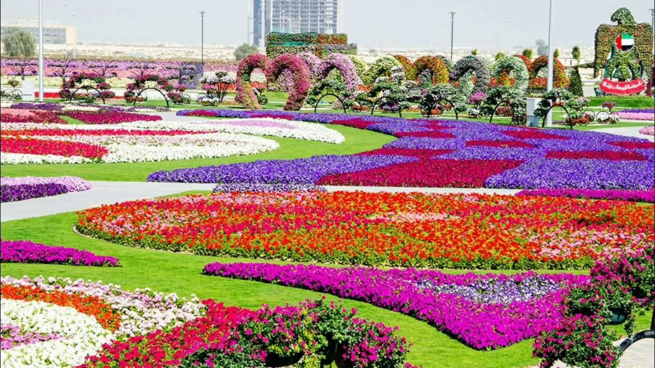 Beautiful nature flower garden wallpaper 1280x720