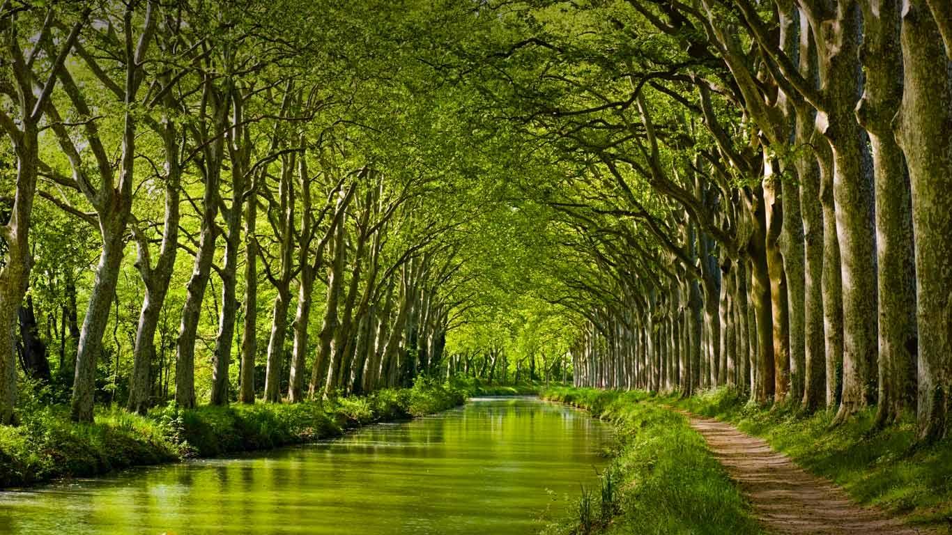 Canal du Midi in late spring Toulouse Haute Garonne Midi Pyrnes 1366x768