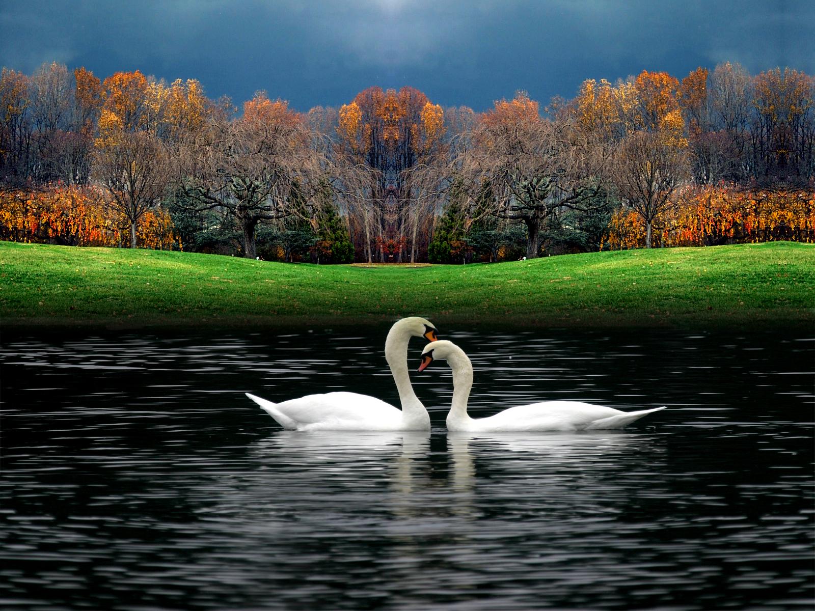 Hd wallpaper beautiful - Beautiful Nature Wallpaper Beautiful Nature Wallpaper Beautiful Nature