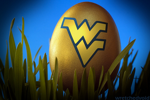Flying WV Old Gold and Blue Easter Egg Flickr   Photo Sharing 500x333