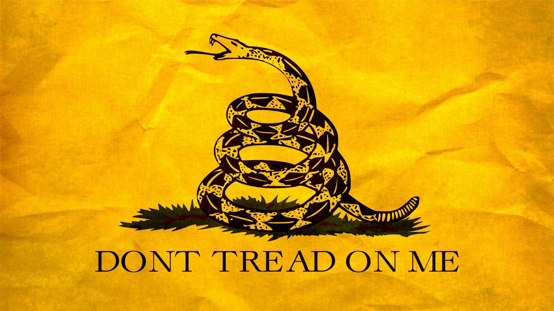Обои snake, Dont tread on me, Metallica. Музыка foto 10