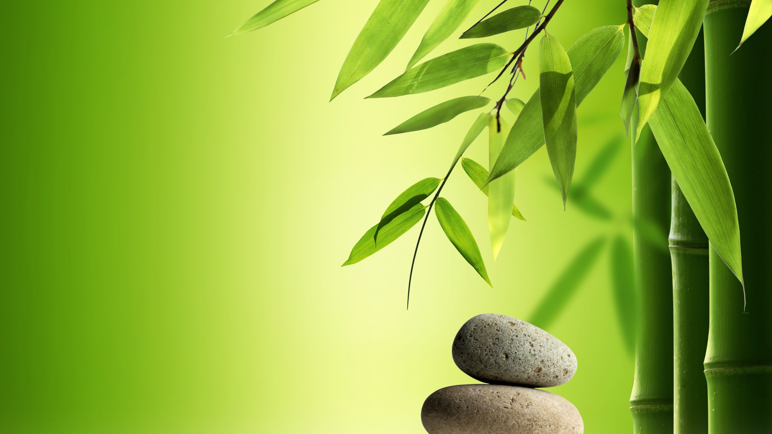 Spa Wallpaper zen stones bamboo water 2560x1440   HD Wallpapers 2560x1440
